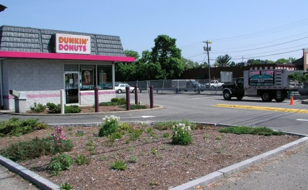 Dunkin Donuts Before