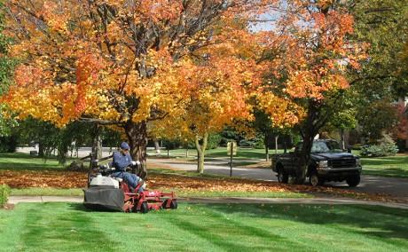 Landscape Maintenance Professionals