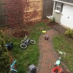 backyard and walkway